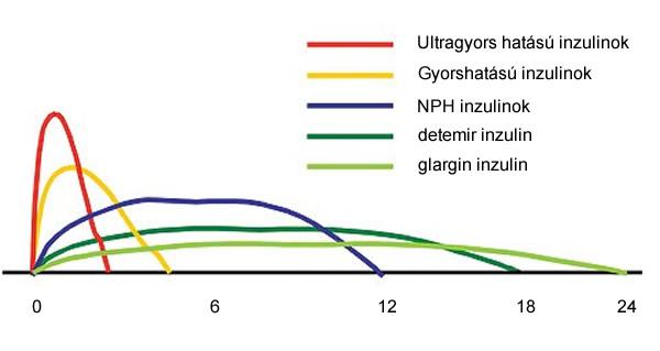 A különböző inzulinok hatásgörbéi