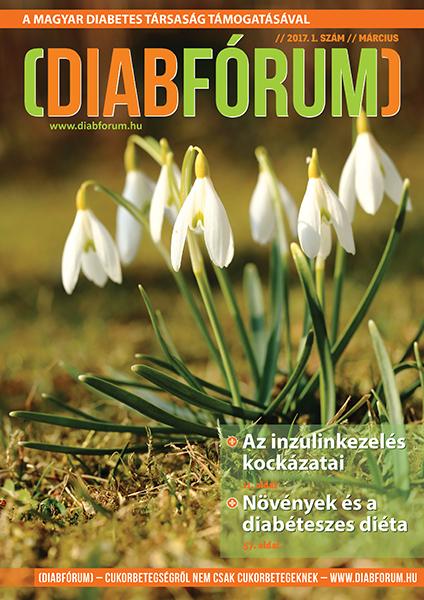 DiabFórum magazin 2017/1 - március