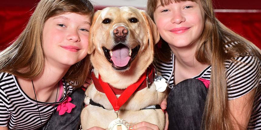 Vércukor jelző kutyák