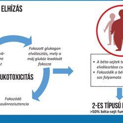 2-es típusú diabétesz visszafejlődése