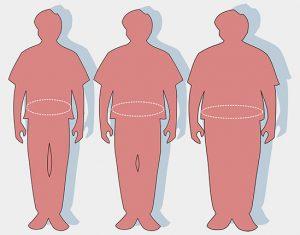Hasi elhízás - inzulinrezisztencia