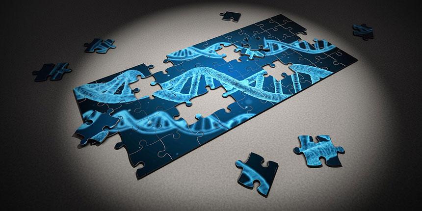 Cukorbetegség a családban, monogénes diabéteszek