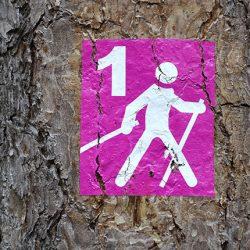 Botra fel 2019-ben is! Szombaton országszerte nordic walking séta